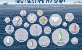 За колко време природата да самопречиства?