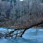 Боянски водопад и Боянско езеро