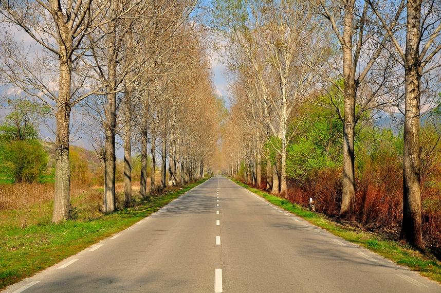 около град Рила, България