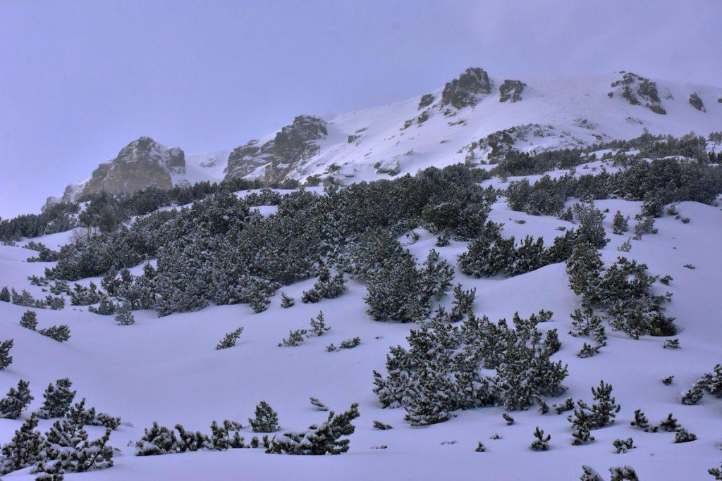 снежни картини