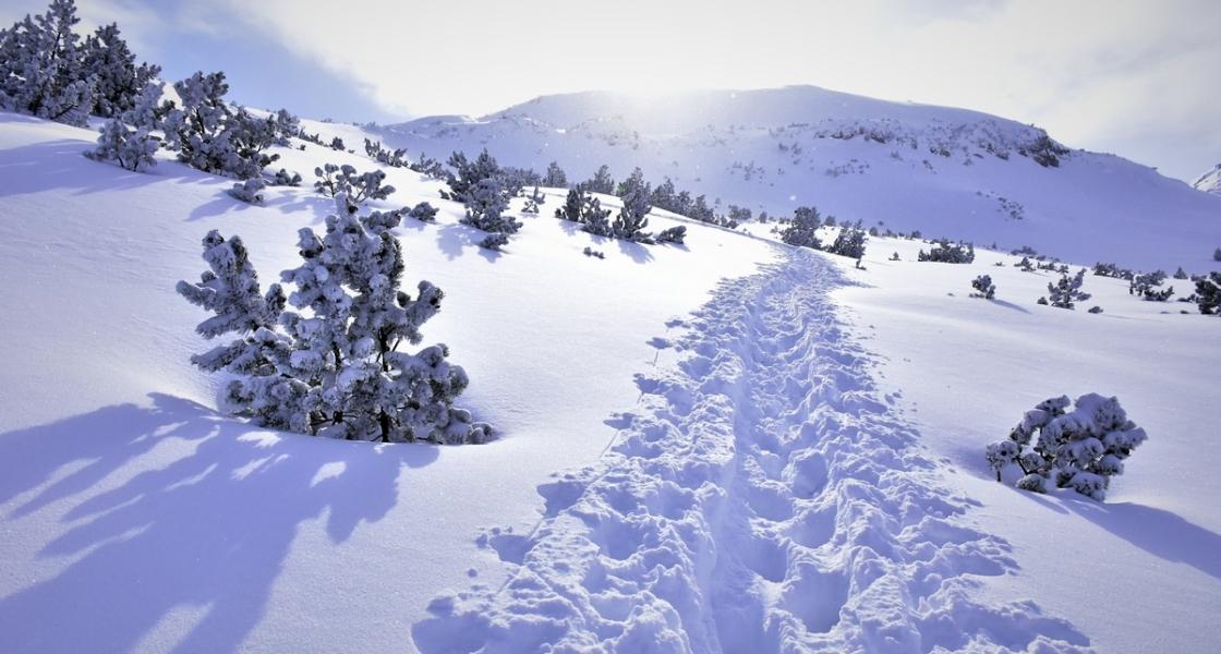 Зимата, спортът и… лавините