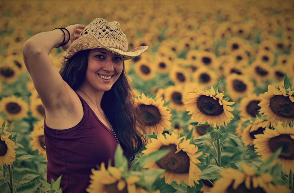 слънчогледи и модели