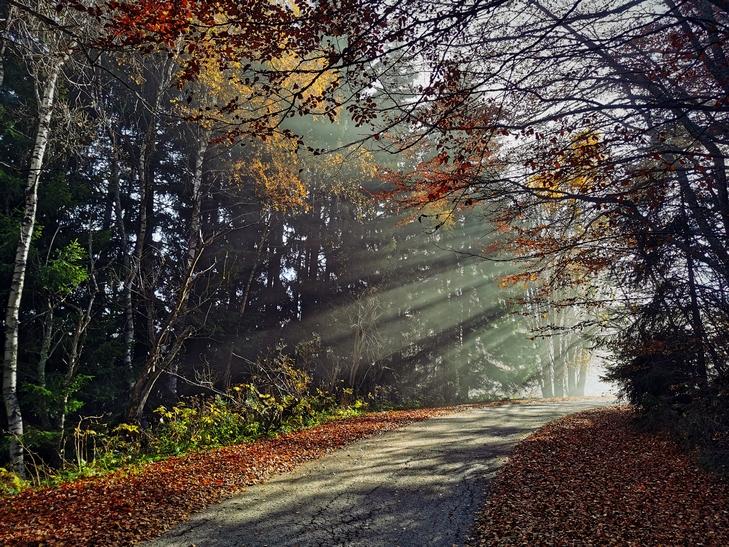 есенни лъчи