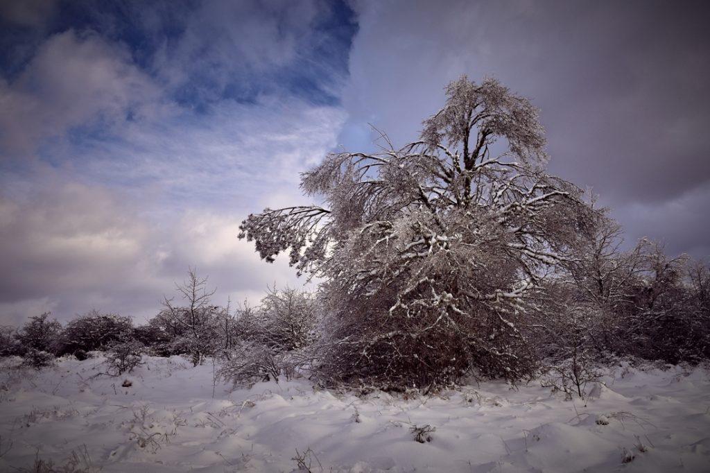 сняг и синьо небе